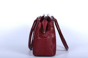 Geanta Elegant rosie H01120 profil